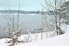 Le lac de Buchenbach