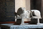 le lion de la cathédrale