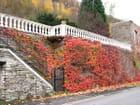 Le mur flamboyant