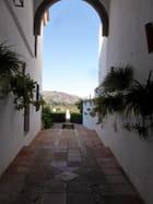 Le palais de mondragon à Ronda