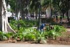 le parc du Capitole