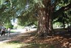 le parc du Vigneau