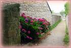le petit passage fleuri