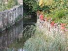Le petit ruisseau au mur fleuri