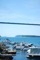 le pont de Franjo Tudman