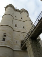 Le pont du donjon de Vincennes