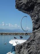 Le port du Lausanne