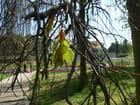 Le printemps au Parc Floral