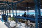le restaurant sur la plage