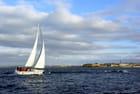 Le retour au port; course du Rhum 2010