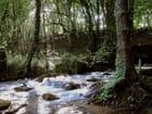 Le ruisseau des moines