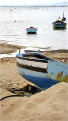 Le sable, la mer, les bateaux, les oiseaux
