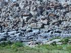 Le temple de pierre