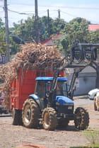 le tracteur de cannes à sucre