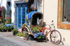 Le vélo fleuri