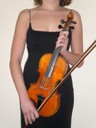 Le violon et ses courbes