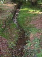 Lentement ce ruisseau coule