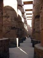 Les 134 colonnes