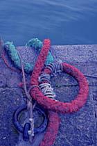 Les amarres attendent le retour des marins pêcheurs...