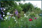 Les clochettes silencieuses du jardin