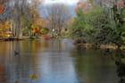 les couleurs d automne