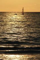 Les couleurs du soir : la magie d'un soleil d'or
