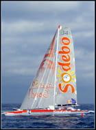 Les géants des mers ; la course du Rhum 2010