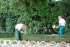 les jardinières d'Opatija