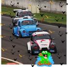 Les oiseaux attaquent!!