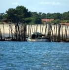 les parcs à huitres du Bassin d'Arcachon