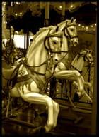 Les petits chevaux de manège