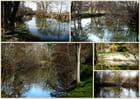 Les photos de la rivière