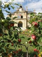 Les pommes de l'hôtel de ville