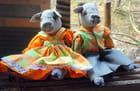 les poupées de chiffon de Lituanie