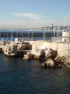les rochers du port de nice