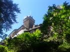 Les tours au-dessus des arbres