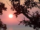 Lever soleil sur saint tropez