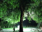 Lumière nocturne