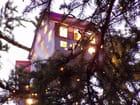 Maison dans l'arbre de noël