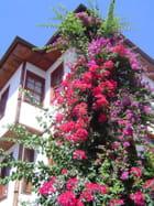 Maison ottomane