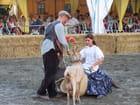 Manon des sources.Festival equestre de TARBES.