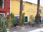 Marbella l'Andalouse !