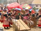 Marché hmong