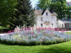 Massif de fleurs printanières