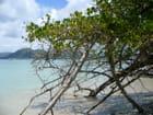 Mer turquoise en Martinique