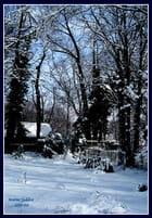 """""""Merveilleux paysage de neige""""."""