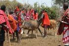 Midi chez les Masaïs - Cérémonie initiatique