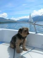 MIEL fait du bateau