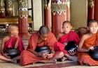 Moinillons à Bagan