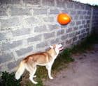 Mon ballon à moi